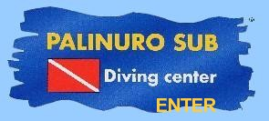ENTRA nel Sito del Palinuro Sub Diving Center